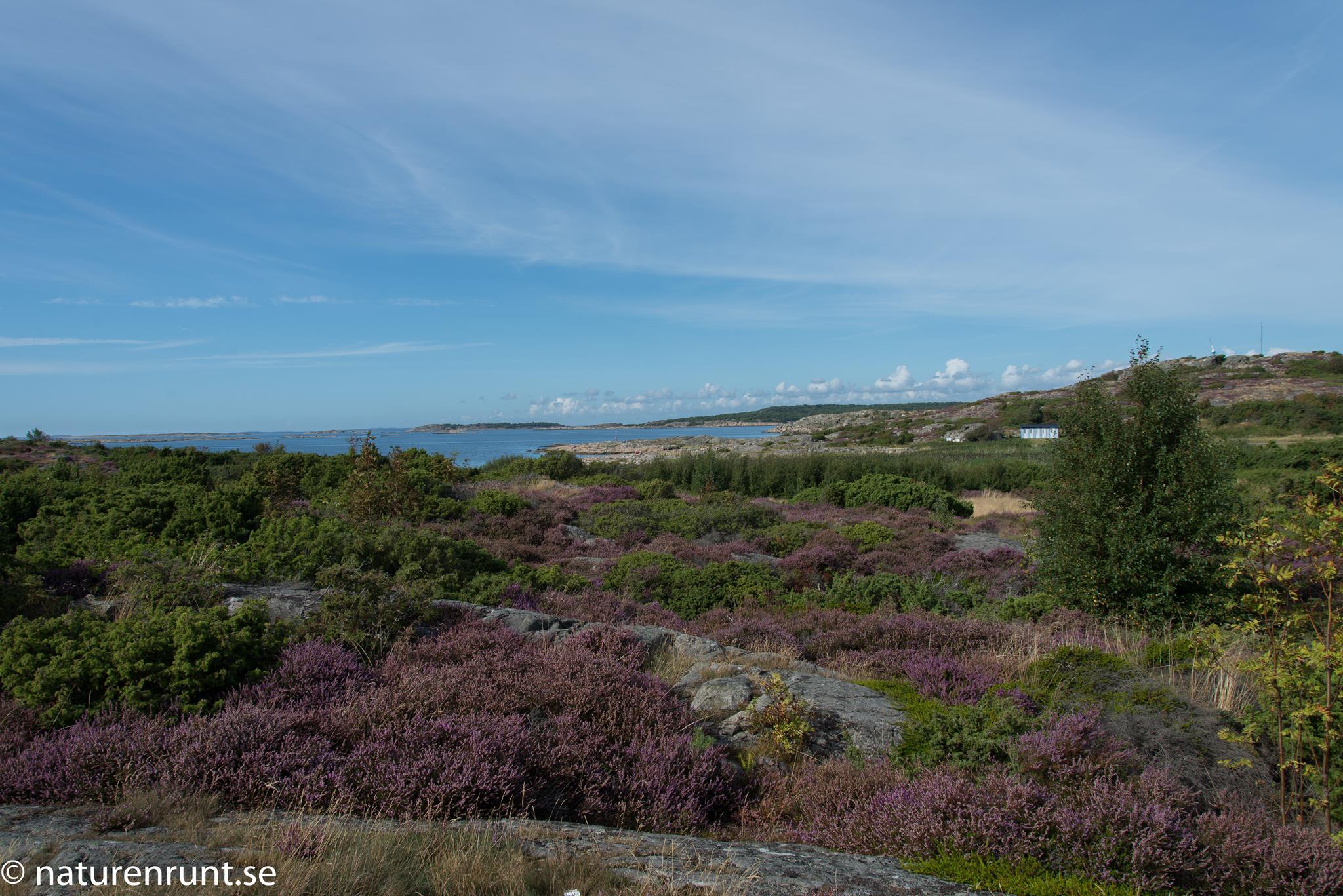 Vallda Sandö - Norra viken med den närmaste badstranden