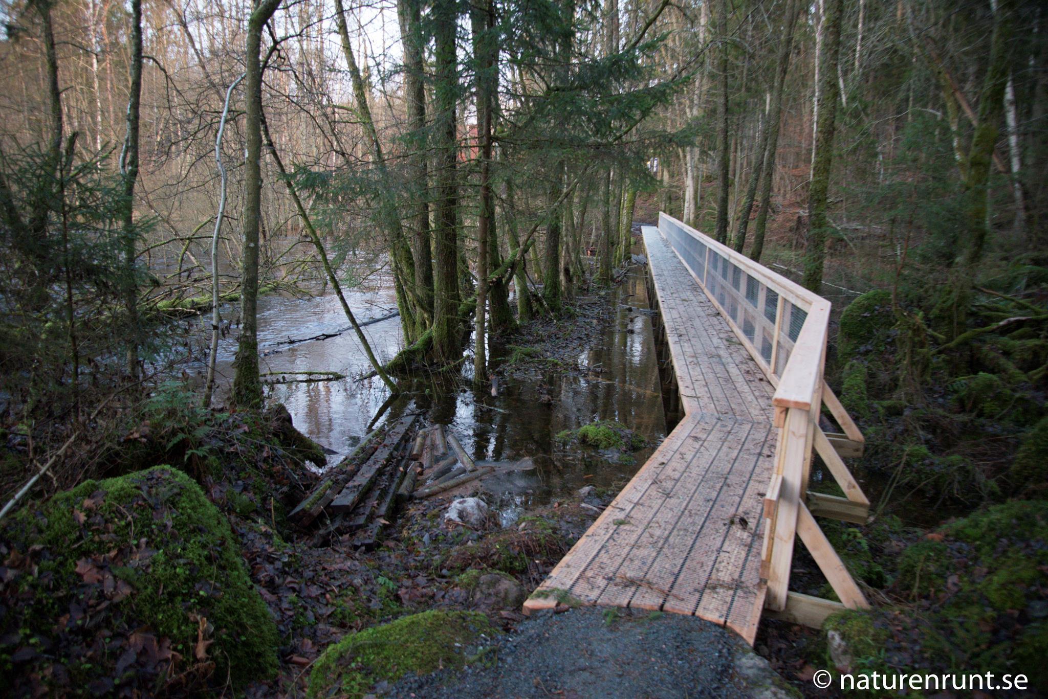 Spänger - Det är lättvandrat med nya broar över de våta partierna