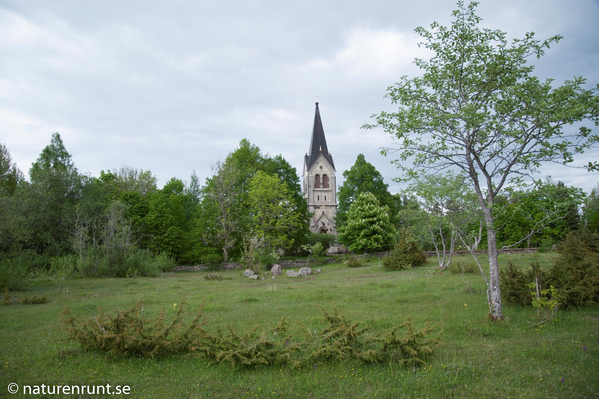 Österplana Kyrka - Alvarmark