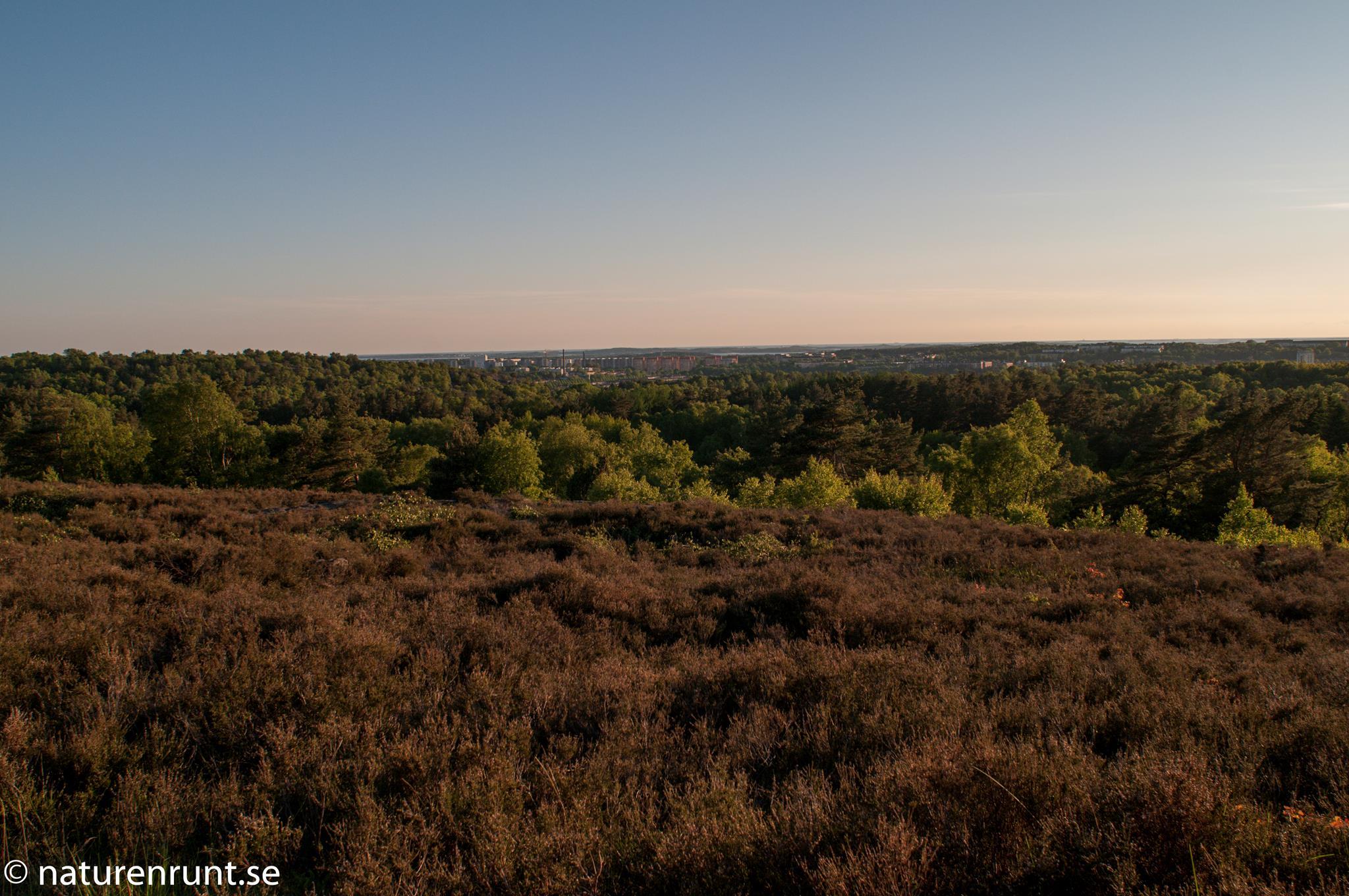 Änggårdsbergen - högst upp på ljungheden med utsikt mot Frölunda